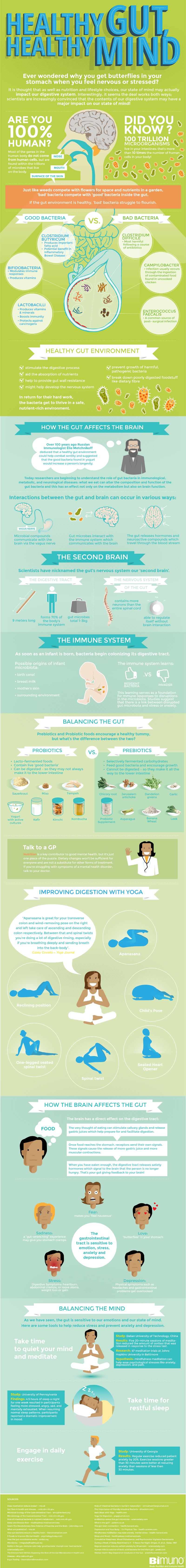 gut bacteria poster