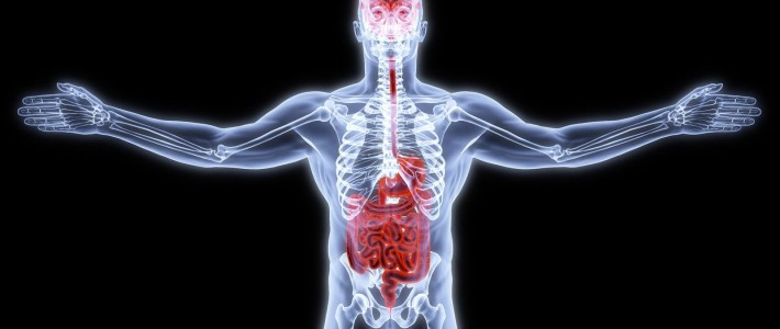 Pay Attention to Your Gut: The Gut-Mind Connection.